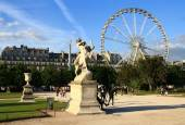 Ferris wheel in the Tuileries Gardens. — Stock Photo