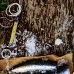 Fresh fish herring fillet — Stock Photo #67482527