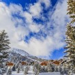 Winter landscape, snow-covered trees in swiss Alps — Stock Photo #68561529