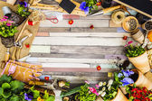 Garden tools, flowers and seeds on a wooden background, frame — Stock Photo