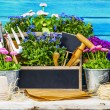 Garden tools and flowers on a wooden background — Stock Photo #70815643