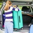 Traveling on vacation - the girl puts the suitcase in the car — Vídeo de stock #71897183