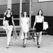 Young women after shopping — Stock Photo #73556471