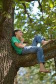 Little boy on tree — Stock Photo