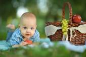 Little happy boy have a picnic — Stockfoto