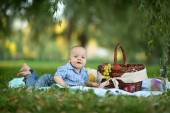 Little happy boy have a picnic — 图库照片
