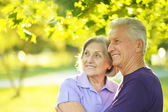 Mature couple  in the park — Stock Photo