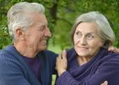 Mature couple hugging   in the park — Stock Photo