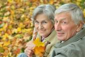 Senior couple in autumn forest — Stok fotoğraf