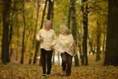 Ouder paar in park — Stockfoto