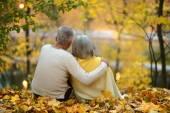 Paar in herfst park — Stockfoto