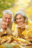 Casal no parque outono — Foto Stock