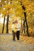 Bejaarde echtpaar in park — Stockfoto