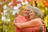 Couple at autumn park — Stock Photo