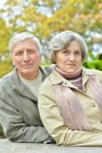 Elderly couple walking in the park — Stock Photo
