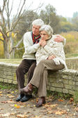 Elderly couple in the park — Stock Photo