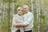Elderly couple in forest — Stock Photo