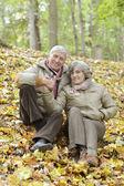 Couple in autumn park — Stock Photo