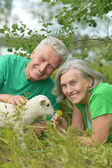 Couple  with toy sheep — Stock Photo