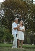 Couple de personnes âgées dans le parc de l'été — Photo