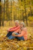 Old people in the autumn park — Stock Photo