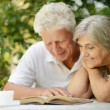 Older couple reading a book — Stock Photo #59851233