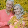 Elderly couple at nature — Stock Photo #59852971