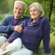 Senior couple sitting on grass — Stock Photo #59853121