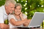 Elderly couple with laptop — Stock Photo