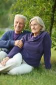 Senior couple sitting on grass — Stock Photo