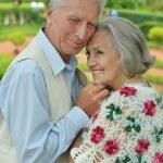 Elderly couple  in summer park — Stock Photo #62956849