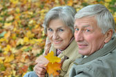 Senior couple in autumn park — Stock Photo