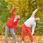 Senior couple exercising in park — Stock Photo #65065361