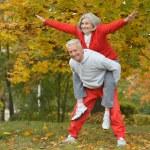 Senior couple exercising in park — Stock Photo #65080697