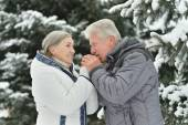 Senior couple walking in winter — Stock Photo