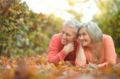 Mature couple  in  autumn park — Stock Photo