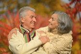 Altes Paar im Herbst-park — Stockfoto
