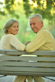 Amusing senior couple — Stock Photo