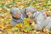 Senior couple in autumn park — Stock Photo