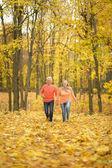 Äldre par i höst park — Stockfoto