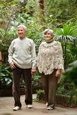 一緒に高齢者のカップル — ストック写真
