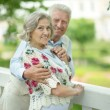 Mature couple in summer park — Stock Photo #70242201