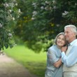 Mature couple in summer park — Stock Photo #70242275