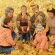Family relaxing in autumn park — Stock Photo #70243041