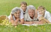 芝生の上の家族の笑顔 — ストック写真