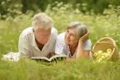 Amusing old couple on picnic — Stock Photo