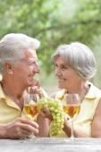 老夫妇喝红酒 — 图库照片