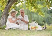Loving elderly couple  — Stock Photo