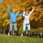 Senior couple exercising in  park — Stock Photo #73670657