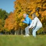 Senior couple exercising in  park — Stock Photo #73670713